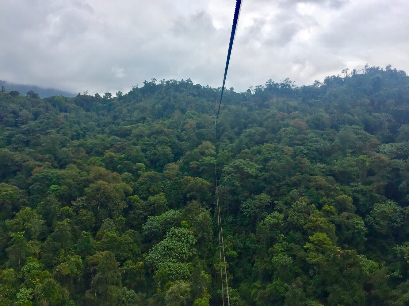 The next day I decided to try the ziplining with Mindo Canopy Adventures. And it was awesome! Not a small course the ten lines send you hundreds of metres ... & Ecuador part one: Quito Mindo and Quilotoa u2013 The Curious ...